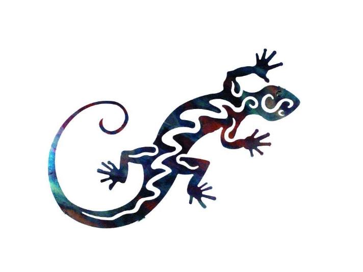 SalamanderX1000 фотография